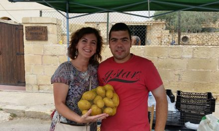 Potato Festival in Qrendi