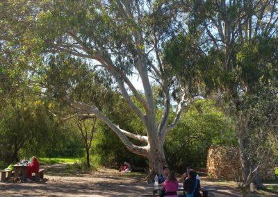kennedy grove14