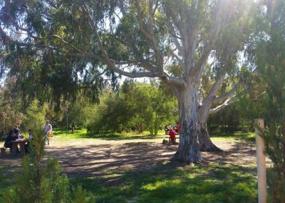 kennedy grove2